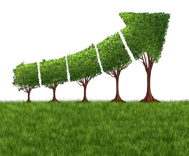 Business Growth Metaphor